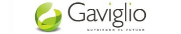 Caso Marca Gaviglio - Corporate Estrategia y Creatividad de Marca