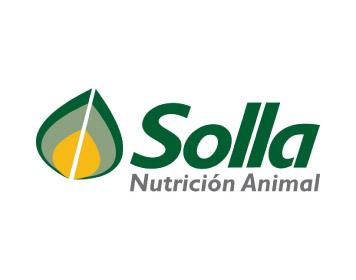 Corporate Consultoría de Marca - Logo Solla