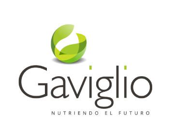 Corporate Consultoría de Marca - Logo Gaviglio