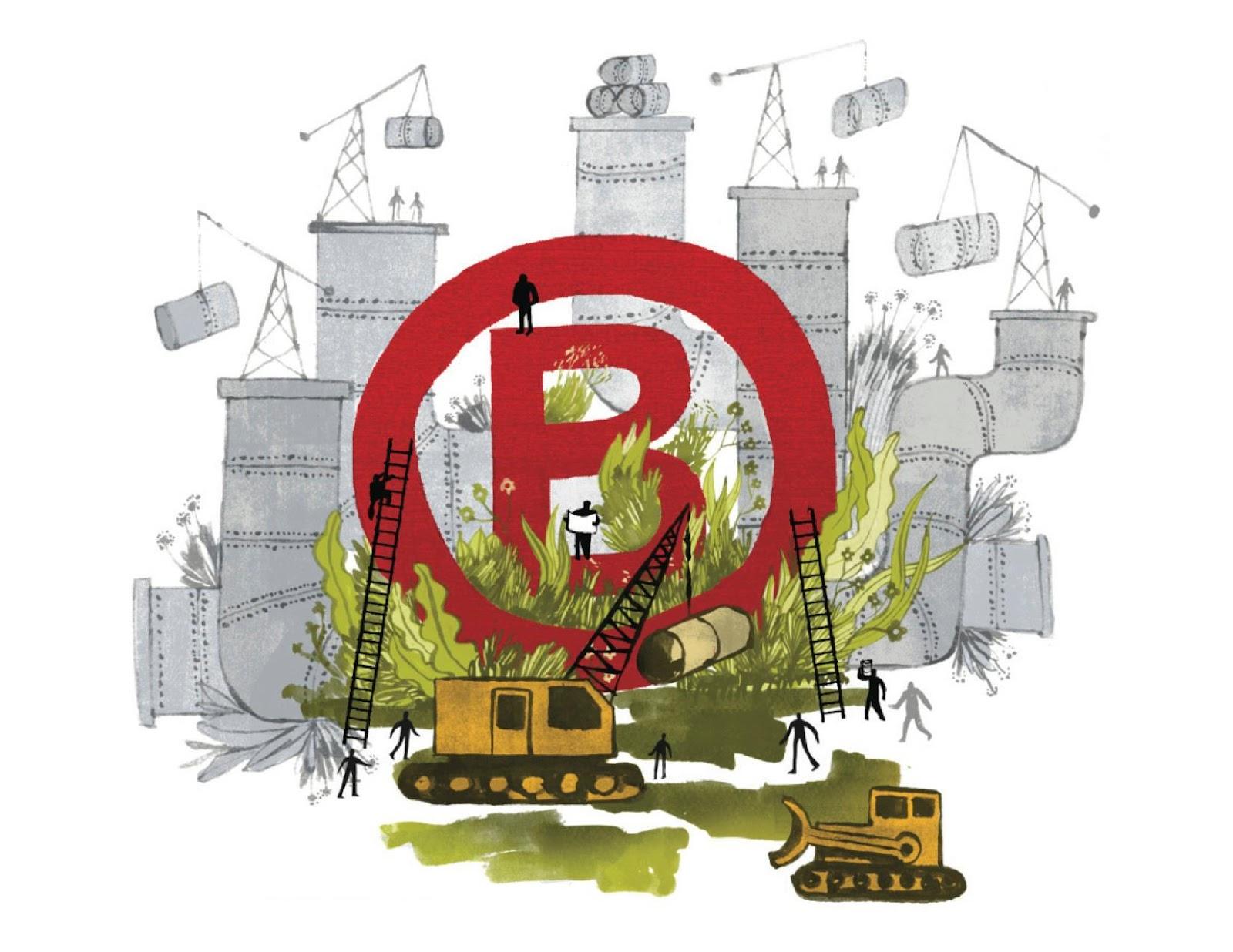 Las B Corps están construyendo un nuevo sector económico, para un mundo mejor